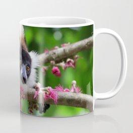 Black and White Ruffed Lemur, Madagascar Coffee Mug