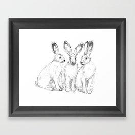 Three Hares sk131 Framed Art Print