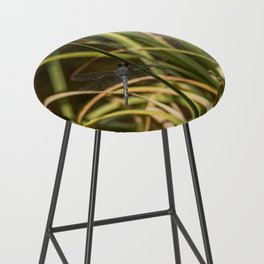 Dragonfly in the marsh Bar Stool