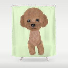 poodle hair cut Shower Curtain