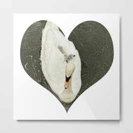 Mother Swan II Metal Print