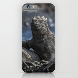 Iguanas relaxing sunbathing on rock at beach iPhone Case