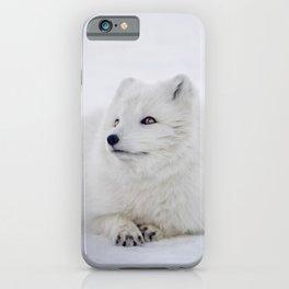 Arctic Fox iPhone Case