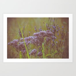 Summer Botanical Meadow Marsh with Joe Pye Weed and Blue Vervain Wildflowers Art Print