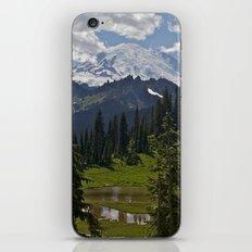 Tipsoo iPhone & iPod Skin