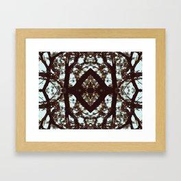 Antique Gem Framed Art Print
