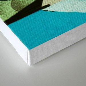 Fish Boxed Canvas Print