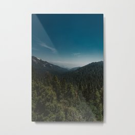 Sequoia National Park XI Metal Print