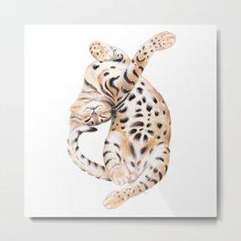 Cute Bengal Kitten Transparent Metal Print