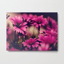 Flower, Flower Patterns Metal Print