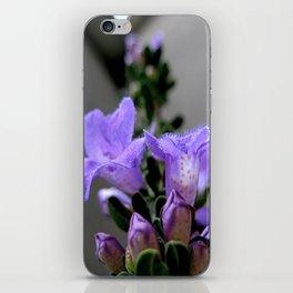 Lav iPhone Skin