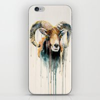 ram iPhone & iPod Skins featuring Ram by Slaveika Aladjova