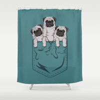 pocket Shower Curtains featuring Pocket Pugs_Teal by Kellabell9
