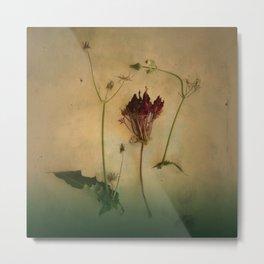 MY FLOWER Metal Print