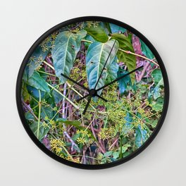 Budding in the rainforest Wall Clock