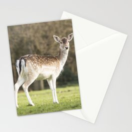 Mum...you there? Stationery Cards