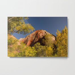 Autumn in Zion National Park Metal Print