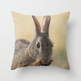 An Eye on You Eastern Cottontail Rabbit Throw Pillow