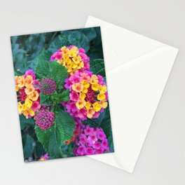 Yellow and Pink Lantanas Stationery Cards