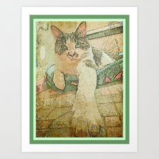Bijou in basket Art Print