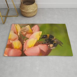 Bee on a Lupin Rug