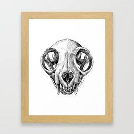Cat Skull illustration Framed Art Print