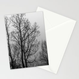 Black and white naked trees Stationery Cards