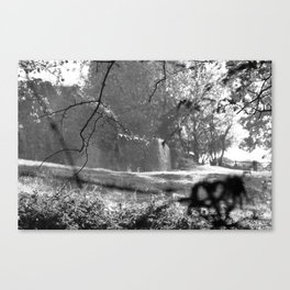 Country bench Canvas Print