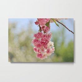Spring Bundle Metal Print