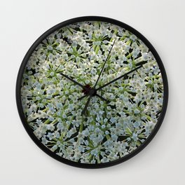 Queen Annes Lace Wildflower in Horicon Marsh Wisconsin Wall Clock