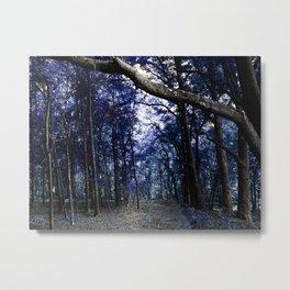 Pathway to Bliss Dark Blue Metal Print