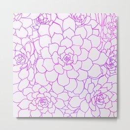 Blush Succulents Metal Print