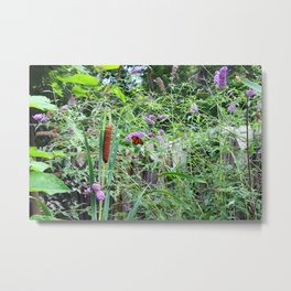 Monarch Butterfly and Reed Metal Print