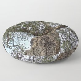 Old Olive Tree Floor Pillow