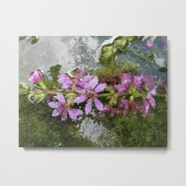 Flowers and reflections in water Metal Print