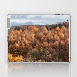 Autumn Larch Laptop & iPad Skin