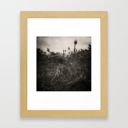 Rushes Framed Art Print