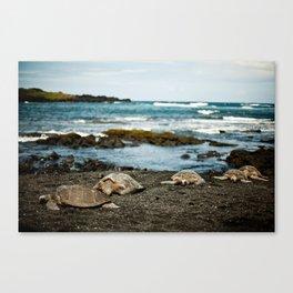 Hawaii Black Sand Beach with Sea Turtles Canvas Print