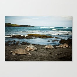 Hawaii Black Sand Beach with Sea Turtles Canvas Print