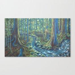 Pacific Rainforest  Canvas Print