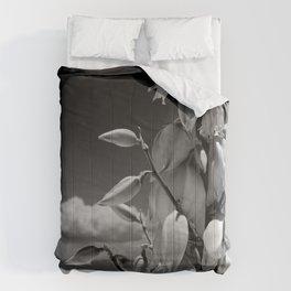 Dare to Bloom. Comforters