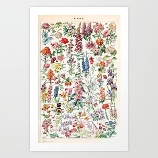 Adolphe Millot - Fleurs pour tous - French vintage poster by dejavustudio