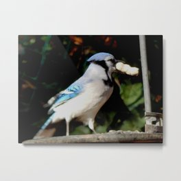 Now what? Metal Print