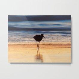 Shore Bird at Sunset Metal Print