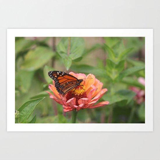 Nature, Landscapes, photography Art Print