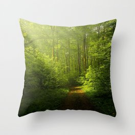 Woodland ,trees ,forest,nature landscape background  Throw Pillow
