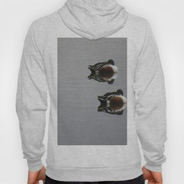 Ducks a reflection Hoody