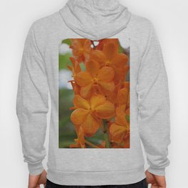 Orange Orchids Hoody