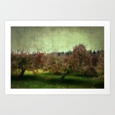 Apple Trees Art Print