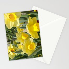Floral Spring Garden with Daffodils and Pansies Stationery Cards